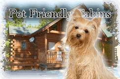 pet_friendly cabins in Pigeon Forge, Pigeon Forge Cabins in Tennessee