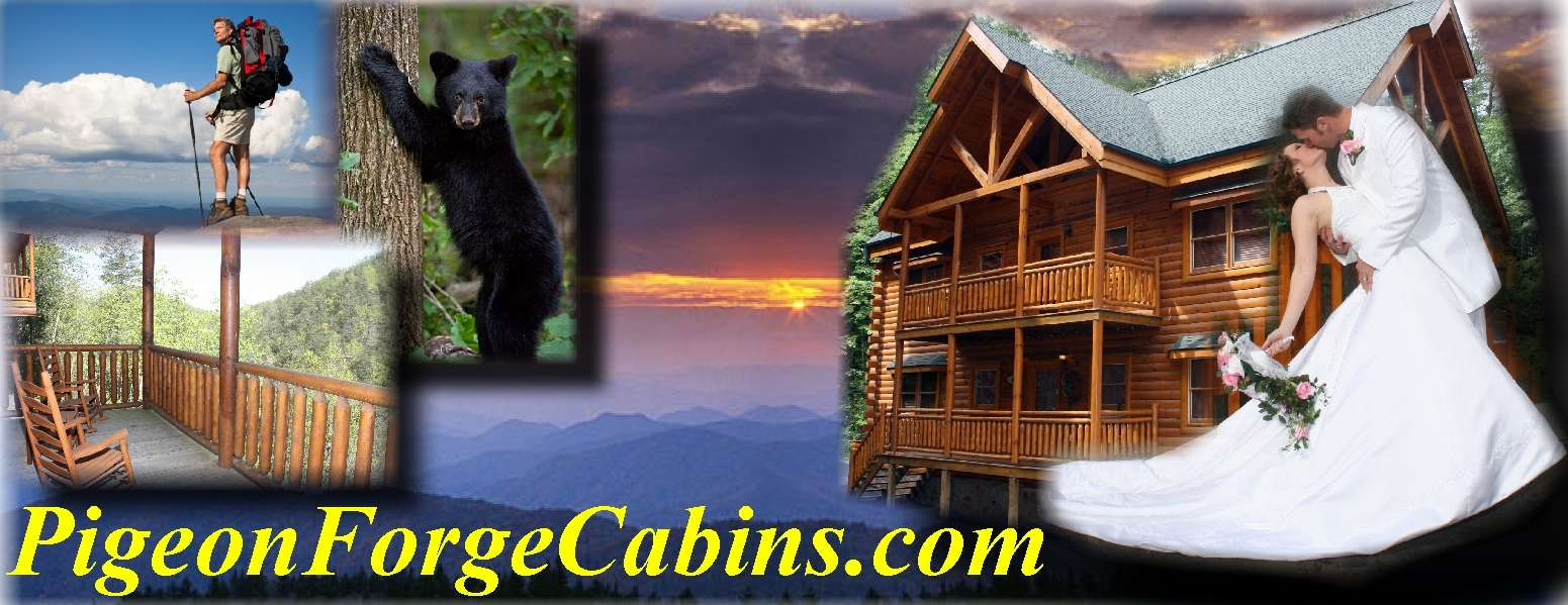 rental rentals on tennessee mountain list cabins deals in tenn specials forge pigeon smoky s and gatlinburg trish cabin