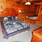 Cabins with swimming pool access